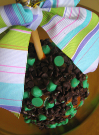 debrito mint chip caramel apple