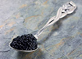 Black Caviar On Spoon
